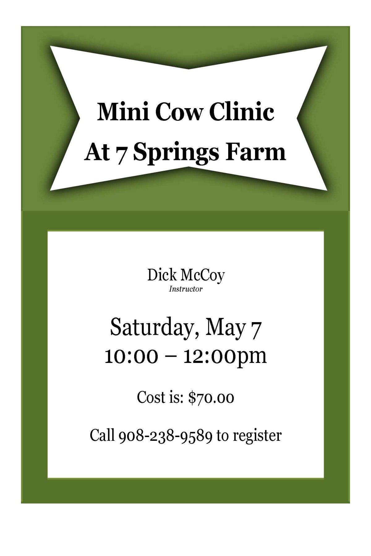 Mini Cow Clinic